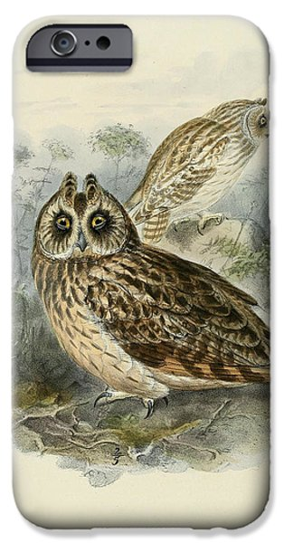 Colored Owls iPhone Cases - Short Eared Owl iPhone Case by J G Keulemans