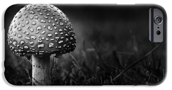 Mushrooms iPhone Cases - Shroom iPhone Case by Shane Holsclaw