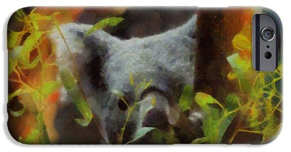Koala iPhone Cases - Shy Koala iPhone Case by Dan Sproul