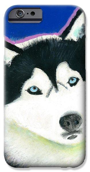 Huskies iPhone Cases - Sasha iPhone Case by Aaron Koster