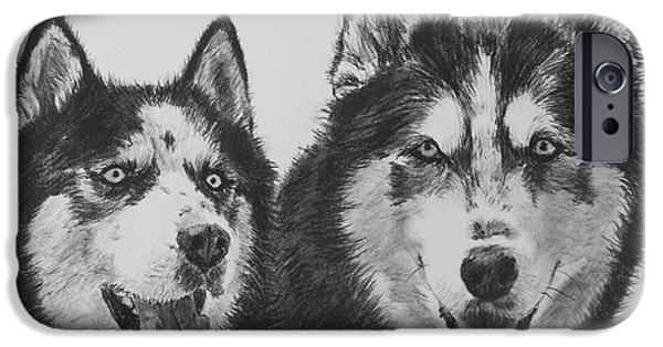 Husky Drawings iPhone Cases - Siberian Husky Dogs Sketched in Charcoal iPhone Case by Kate Sumners