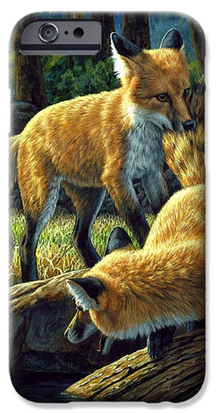 Red Foxes - Sibling Rivalry iPhone Case by Crista Forest