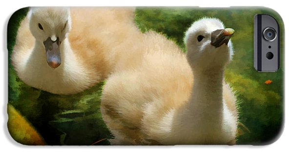 Swans... iPhone Cases - Siblings iPhone Case by Donna Kennedy