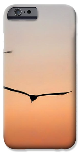Side By Side iPhone Case by Dan Holm