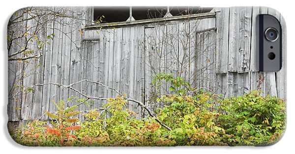 Maine Barns iPhone Cases - Side Of Barn In Fall iPhone Case by Keith Webber Jr