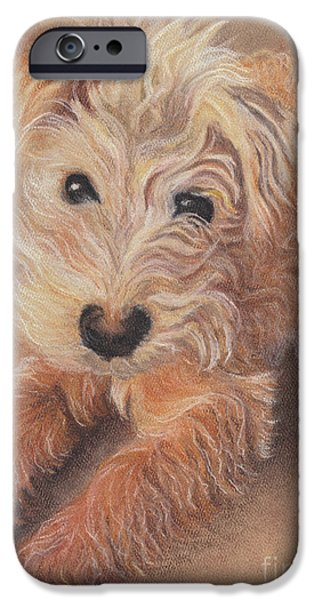 Small Pastels iPhone Cases - Sidney iPhone Case by Carol Wisniewski
