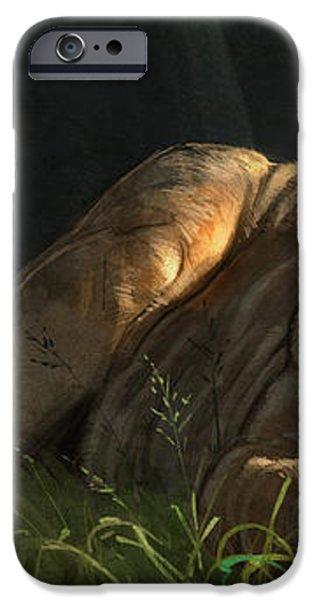 Siesta 2 iPhone Case by Aaron Blaise