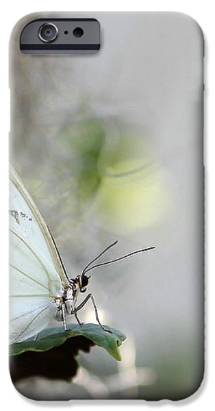 Silent Beauty iPhone Case by Sabrina L Ryan