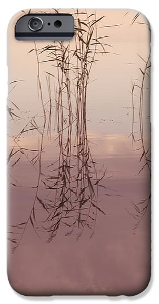 Silent Rhapsody. Sacred Music II iPhone Case by Jenny Rainbow