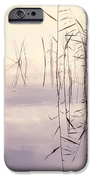 Silent Rhapsody. Sacred Music iPhone Case by Jenny Rainbow
