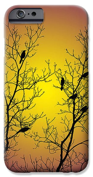 Silhouette Birds iPhone Case by Christina Rollo