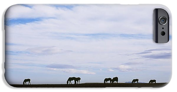 Animals Photographs iPhone Cases - Silhouette Of Horses In A Field iPhone Case by Panoramic Images