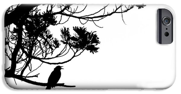 Creative Blackbird iPhone Cases - Silhouette of singing Common Blackbird in a tree iPhone Case by Stephan Pietzko
