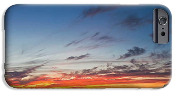 Baja iPhone Cases - Silhouette Of Trees At Sunset, Todos iPhone Case by Panoramic Images