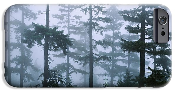 Fir Trees iPhone Cases - Silhouette Of Trees With Fog iPhone Case by Panoramic Images