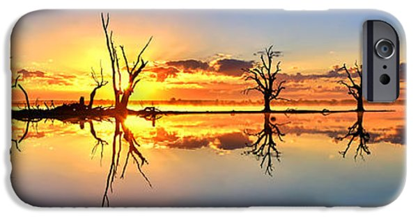 Morning iPhone Cases - Silhouetted Sential Sunset iPhone Case by Bill  Robinson