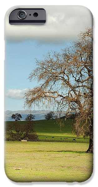 Silicon Valley Hills iPhone Case by Artist and Photographer Laura Wrede