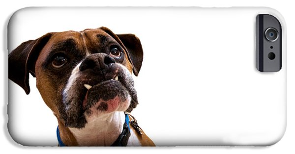Boxer iPhone Cases - Silly Boxer Dog iPhone Case by Stephanie McDowell
