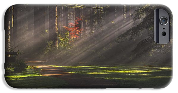 Eerie iPhone Cases - Silver Falls Historic District iPhone Case by Mark Kiver