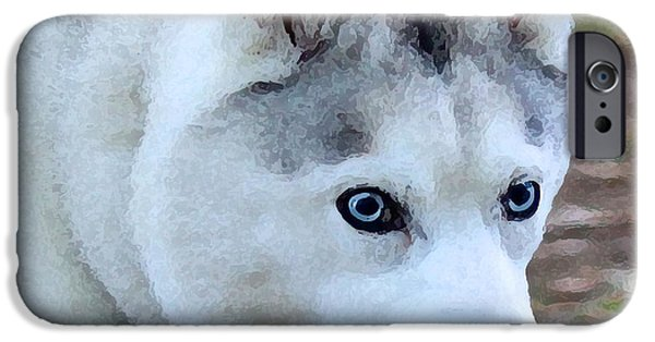 Huskies Digital Art iPhone Cases - Silver Husky with Blue Eyes iPhone Case by May Finch