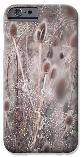 Fall Grass iPhone Cases - Silver Shades of Wild Grass. Triptych iPhone Case by Jenny Rainbow