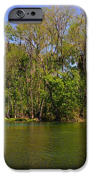 Silver Springs - Old-style Florida iPhone Case by Christine Till