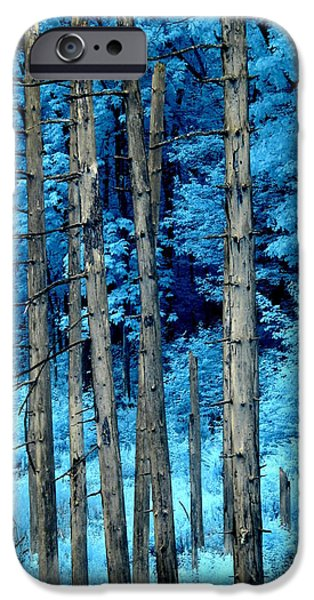 Surreal Landscape iPhone Cases - Silver Trees iPhone Case by Luke Moore