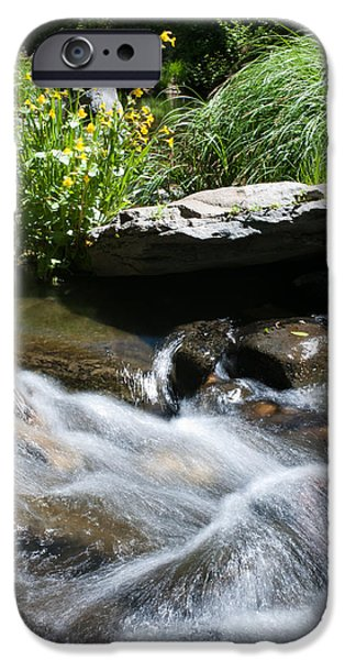 West Fork iPhone Cases - Silvery Waterbreak iPhone Case by Shannon Hastings