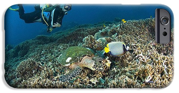 Free-diver iPhone Cases - Similan Islands Thailand Scuba Diver iPhone Case by Stuart Westmorland