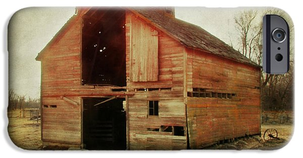 Barn Swallow iPhone Cases - Simple Barn ll iPhone Case by Julie Hamilton