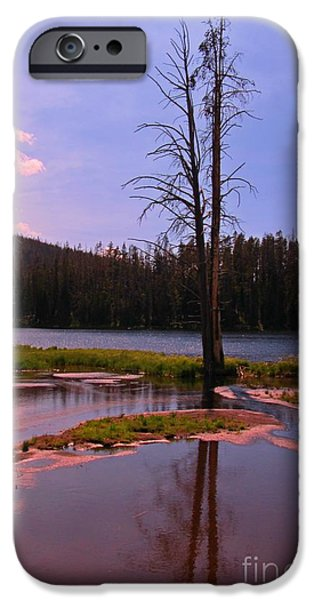 Simple Beauty of Yellowstone iPhone Case by John Malone