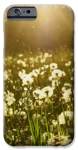 Mix Medium iPhone Cases - Simple Dreams iPhone Case by Jerry Cordeiro