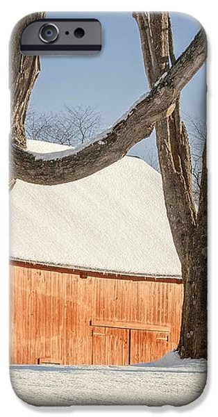 Simple Sugar iPhone Case by Bill  Wakeley