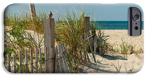 Atlantic iPhone Cases - Singer at the Shore iPhone Case by Michelle Wiarda