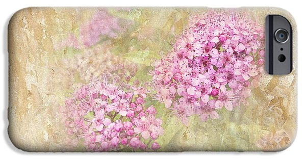 Spirea iPhone Cases - Singing My Song iPhone Case by Betty LaRue