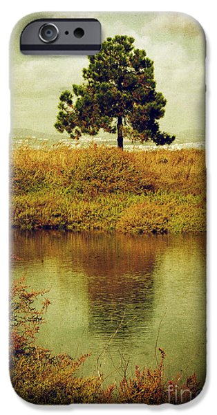 Floods Photographs iPhone Cases - Single pine tree iPhone Case by Carlos Caetano
