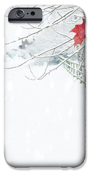 Winter Scenes iPhone Cases - Single Red Leaf iPhone Case by Amanda And Christopher Elwell