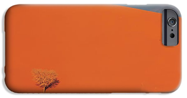 Sand Dunes iPhone Cases - Single Tree In Desert Namibia iPhone Case by Panoramic Images