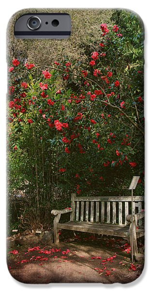Park Benches iPhone Cases - Sit With Me Here iPhone Case by Laurie Search