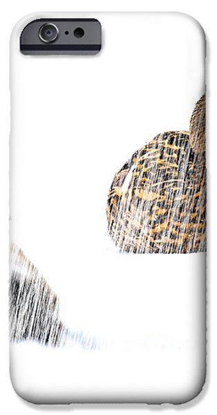 Sitting Ducks in a blizzard iPhone Case by Bob Orsillo