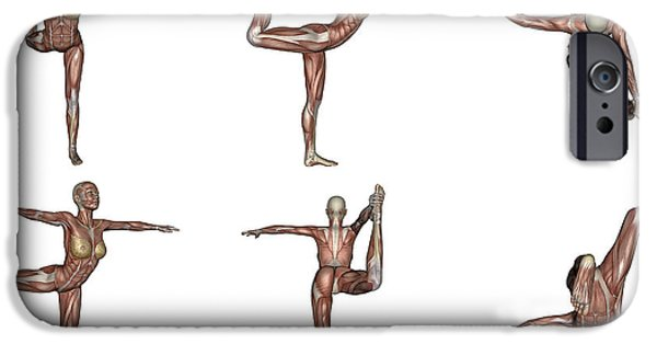 Muscular Digital iPhone Cases - Six Different Views Of Dancer Yoga Pose iPhone Case by Elena Duvernay