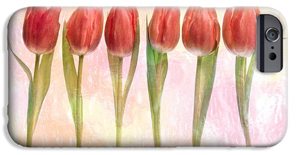 Dark Pink iPhone Cases - Six Pink Tulips With Green Stems iPhone Case by Panoramic Images
