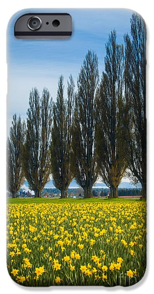 Agricultural iPhone Cases - Skagit Trees iPhone Case by Inge Johnsson