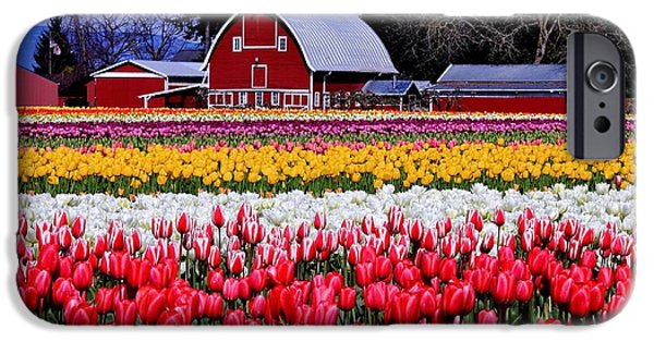 Flora iPhone Cases - Skagit Valley iPhone Case by Benjamin Yeager