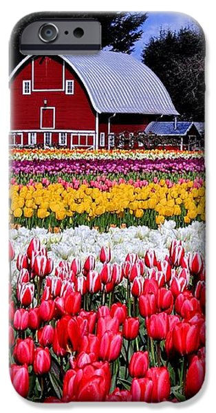 Skagit Valley iPhone Case by Benjamin Yeager