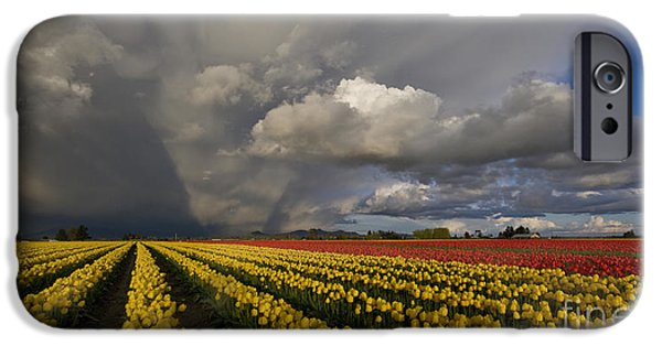 Field. Cloud Photographs iPhone Cases - Skagit Valley Storm iPhone Case by Mike Reid