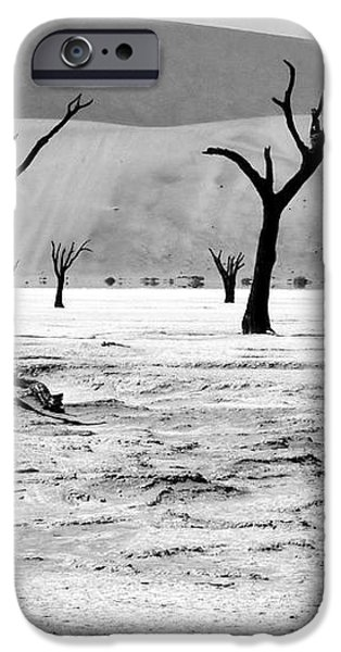 Skeleton Forest iPhone Case by Aidan Moran