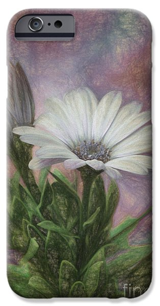 Daisy Bud iPhone Cases - Sketchy Daisy In Mother Of Pearl iPhone Case by Lois Bryan