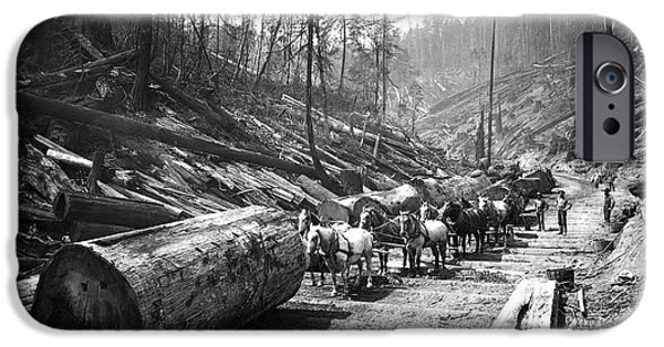 Horse iPhone Cases - SKIDDING REDWOOD LOGS c. 1890 iPhone Case by Daniel Hagerman