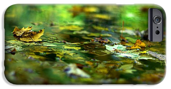 Autumn Leaf On Water iPhone Cases - Skimming Leaves iPhone Case by Simone Ochrym